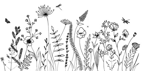 Fototapeta Łąka Black silhouettes of grass, flowers, herbs and various insects isolated on white background. Hand drawn sketch flowers and insects.
