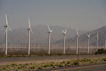 Massive Farms Of  Green Energy...