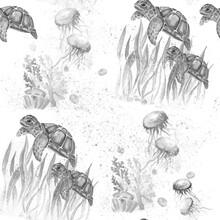Aquarelle Painting Of Turtle S...
