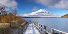 Mount Fuji And Lake Yamanaka, ...