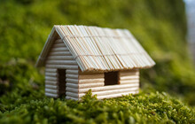 Miniature House, Made Of Tooth...