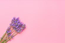 Bouquet Of Lavender Flowers Ar...