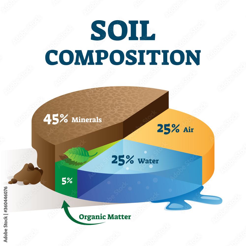 Fototapeta Soil composition structure labeled educational scheme vector illustration.