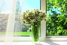 On The Windowsill There Is A Vase With A Bouquet Of White Clover Flowers, Lace Light Tulle. Window View Of The Garden And The Landscape Of The Courtyard, Blue Sky, Trees And Sunny Day. Home Interior