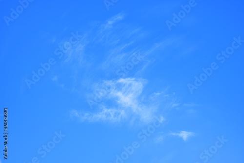 Obraz na plátně 澄んだ青空と薄雲の天景