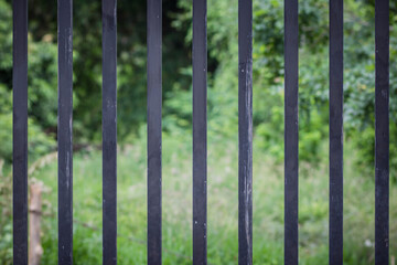 Black iron cage fence Looking through the green nature. Freedom and independent concepts