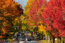 Salem, Oregon, A Street Scene ...