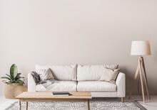 Scandinavian Living Room Desig...