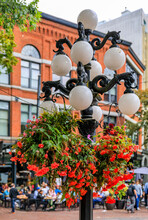 Street Light With Flower Baske...