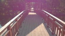 Forest River Wooden Bridge Old...
