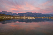 Pink Sunrise At Mono Lake, CA