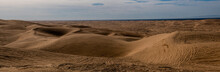 Panoramic View Of The Imperial Sand Dunes In The Sonoran Desert Of California, USA, Featuring Tire Tracks From Dune Buggying