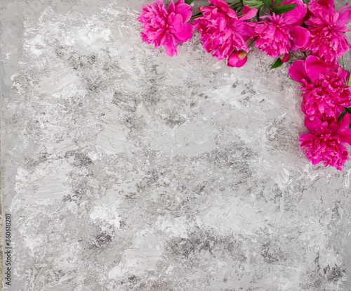 Fototapeta Floral pattern, frame made of beautiful pink peonies on gray background. Flat lay, top view. Floral frame. obraz na płótnie