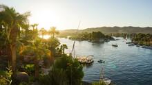 Nile River Bank In Egypt Sunse...