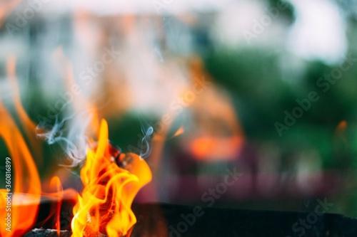 Fototapeta Closeup of orange flames from burning wood