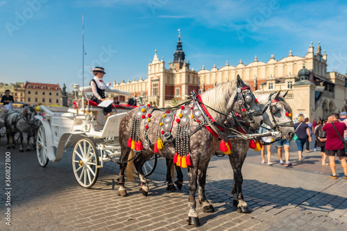 Fototapety, obrazy: Horses carriages at Main square in Krakow, Poland