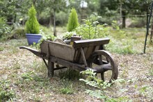 Shallow Focus Shot Of An Old Wooden Cart With A Blurred Background