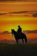 Cowboy On Horseback Silhouette