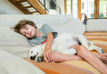 6 Year Old Boy Resting On Sofa With His English Cream Golden Retriever