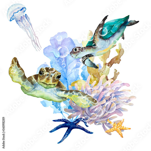 Sea turtles, jellyfish with long tentacles, seaweed, coral, anemone and starfish on a white background, watercolor drawing.