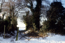 Winter Landscape With Snow On Fields. Five Bar Gate Across Farm Track. Tall Bare Trees And Hedges. Late Afternoon Sky.