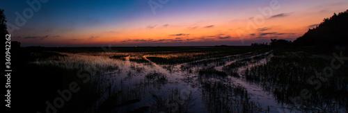 Photo Atardecer en los campos de arroz de Cullera (Valencia-España)