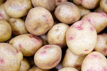 Pile Of Some King Edward Potatoes With Several Pink Dots On Them