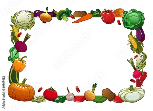 Farm ripe vegetables vector frame border. Cauliflower, cabbage and broccoli, pepper, onion and garlic, tomato, pattypan and zucchini, pumpkin, radish, corn and potato, beans and eggplant #360967432