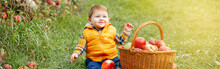 Happy Child On Farm Picking Ap...