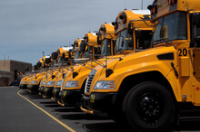 Line Up Of Yellow School Buses