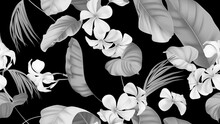 Floral Seamless Pattern, Plumeria Flowers With Various Leaves In Black And White