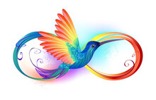 Rainbow Hummingbird With Infinity