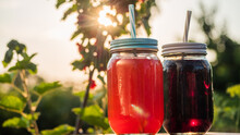 Two Natural Berry Drink Amid R...