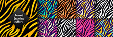 Trendy Wild Animal Seamless Pattern Set. Hand Drawn Fashionable Tiger, Zebra Striped Skin Abstract Texture For Fashion Print Design, Fabric, Textile, Wrap, Background, Wallpaper. Vector Illustration