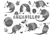 Cute Little Armadillos Doodle Collections Set