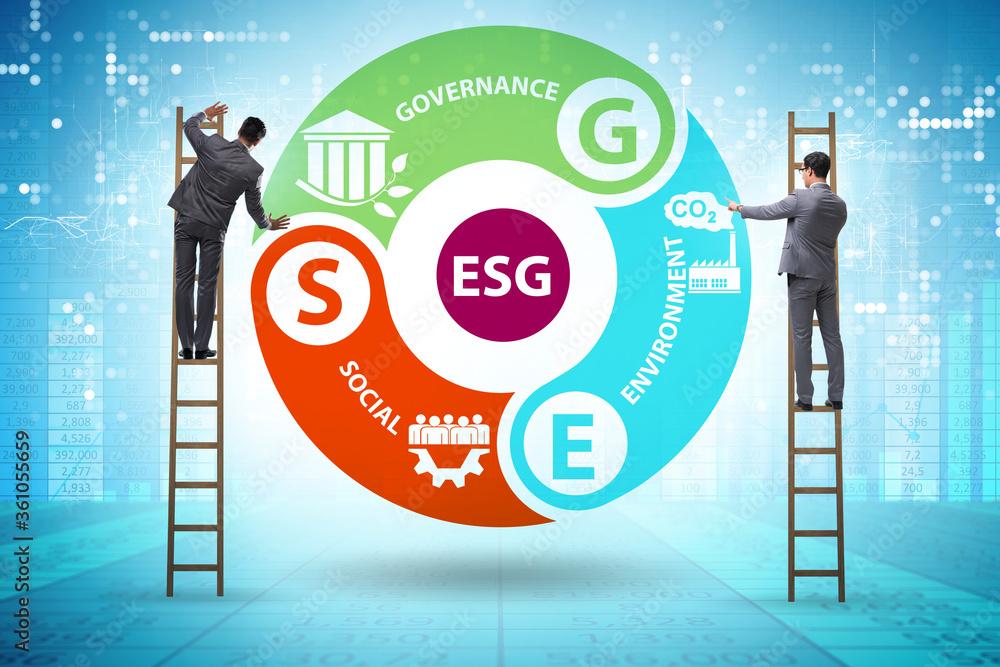 Fototapeta ESG concept as environmental and social governance with business