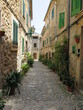 an alley in Valldemossa, Tramuntana Mountains, Mallorca, Spain, in the month of June