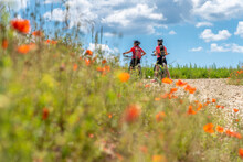 Grandmother And Granddaughter Underway With Their Mountain Bikes On A Sunny Summer Day Between Red Poppies And Cornfields Under A Beautiful Blue Sky With White Clouds