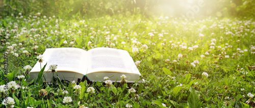 Fototapeta Open book lies on a lawn with clover in the evening sun, holidays and relaxation in the garden during coronavirus pandemic, panoramic nature background, copy space, selected focus obraz