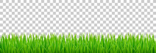 Green Grass On Spring Lawn Or ...