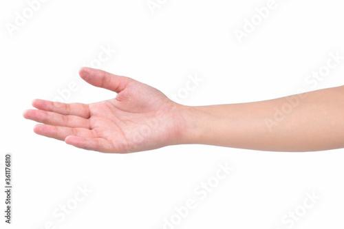 Fotografie, Obraz beautiful female hand isolated on white background