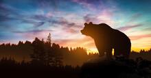 Big Bear Silhouette On Mountai...