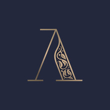 Vintage A Letter Logo With Pre...