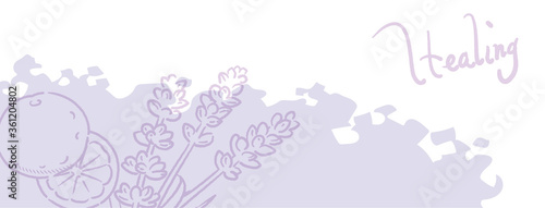 Fototapeta バナー, 背景などに使えるラベンダーとオレンジのスケッチイラスト。ベクター画像 obraz na płótnie