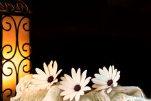 Three Pink Daisies On Lace Wit...