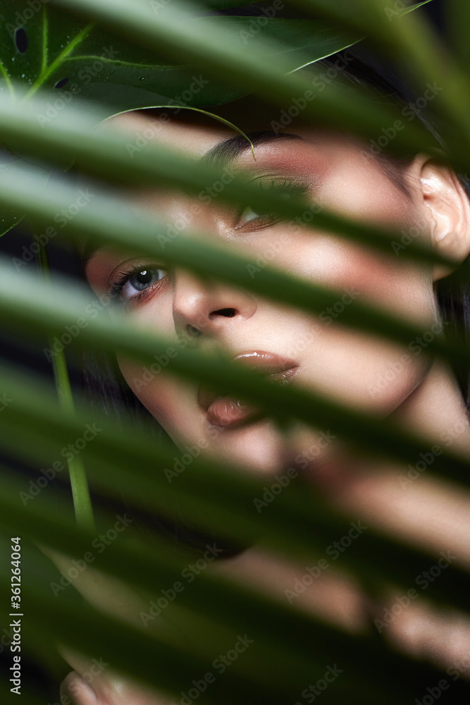 Fototapeta beautiful girl behind the palm. Beautiful young woman with Make-up