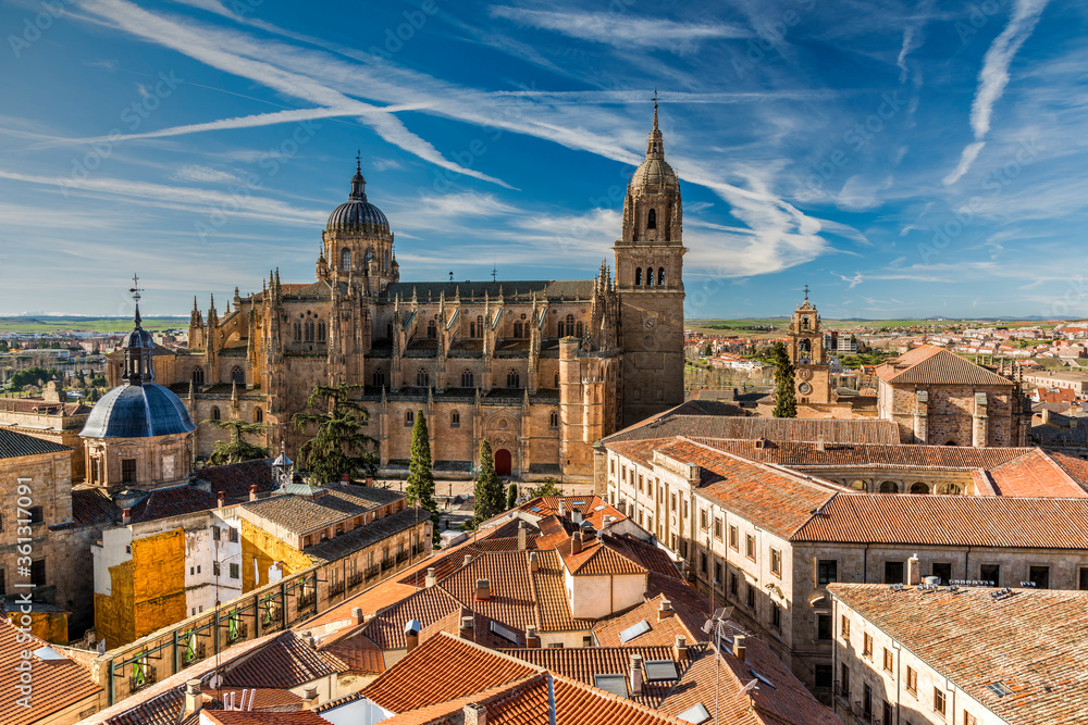 Fototapeta City skyline with the Cathedral in the foreground, Salamanca, Castile and Leon, Spain