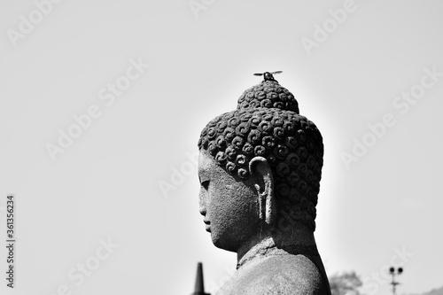 Buda, blanco y Negro. Java, Indonesia Canvas Print