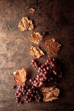 Ripe Red Grapes And Dried Up V...
