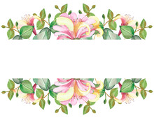 Watercolor Hand Painted Nature Floral Banner With Pink Honeysuckle Flowers And Green Eucalyptus Leaves On Branch On The White Background For Invite And Greeting Card With The Space For Text